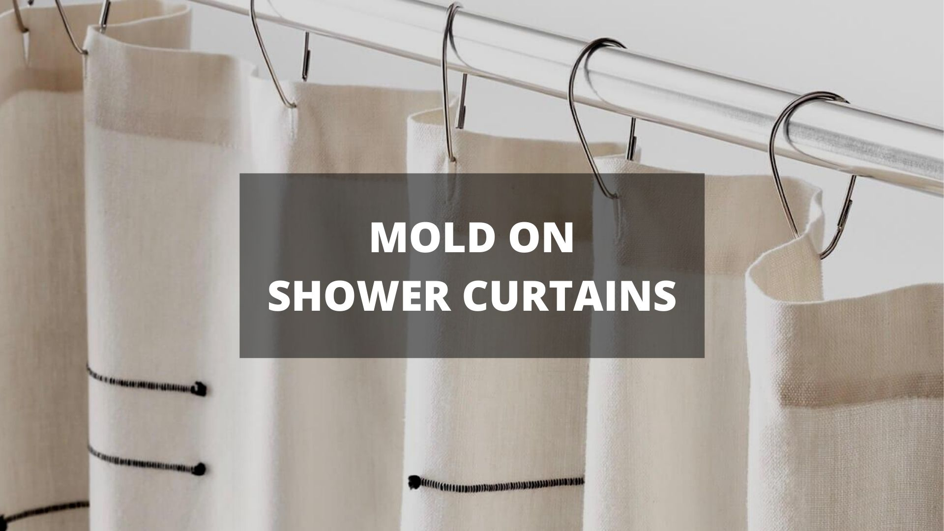 How To Remove Mold From Shower Curtains   Mold Remediation