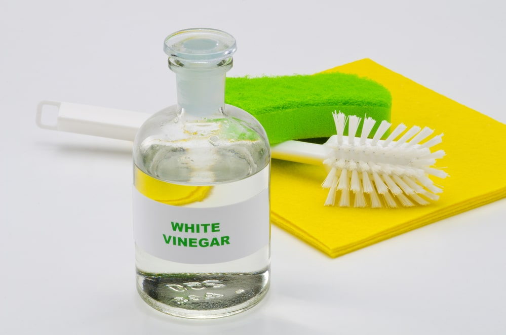 white vinegar for mold removal